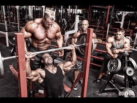 bodybuilding glutamina