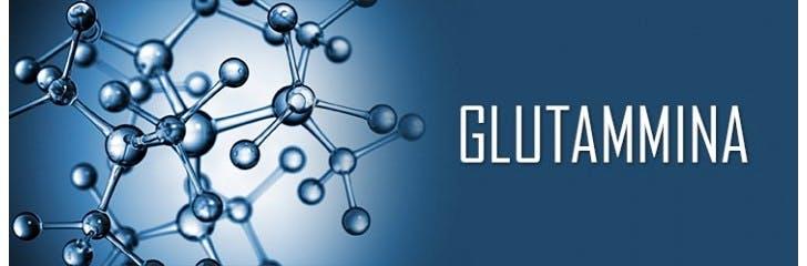 glutammina effetti