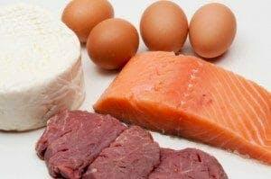 dieta proteine muscoli