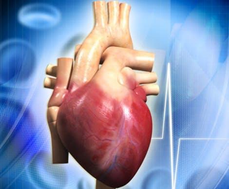 pompa sodio potassio cuore