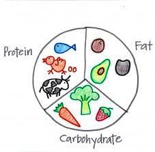 La scelta accurati dei macronutrienti permette di potenziare la flessibilità metabolica