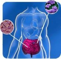 dieta microbiota