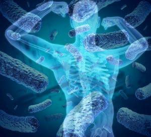 microbiota bodybuilding