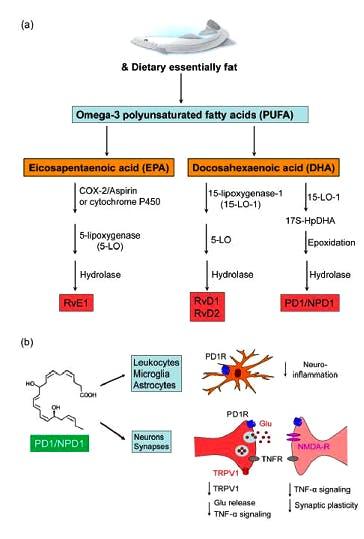 Omega 3 e dolori articolari