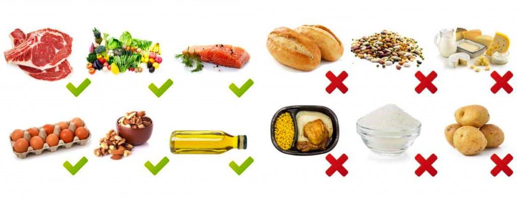 alimenti dieta paleo