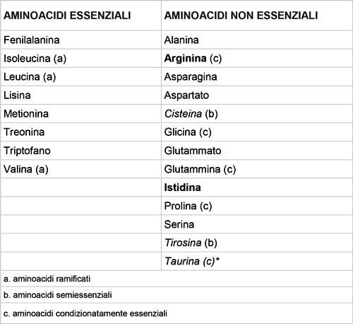 Tabella-aminoacidi-essenziali