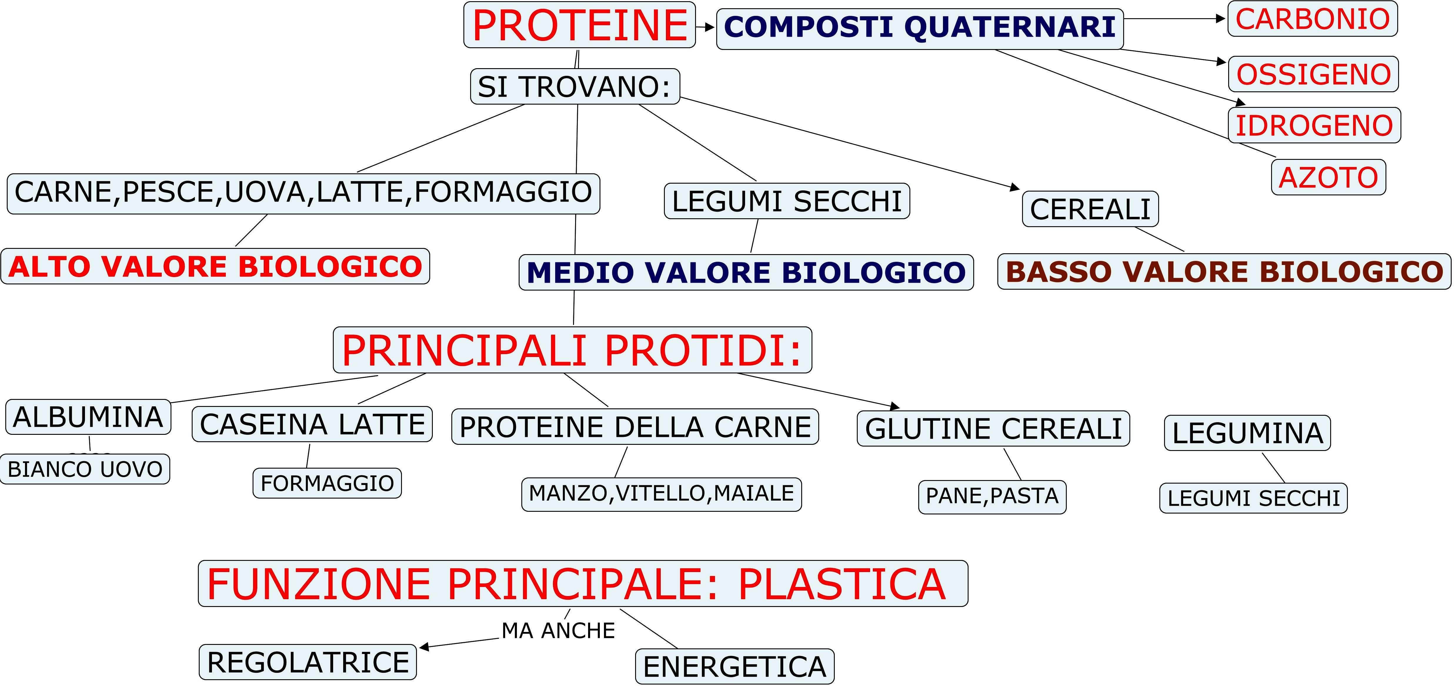 proteine macronutriente