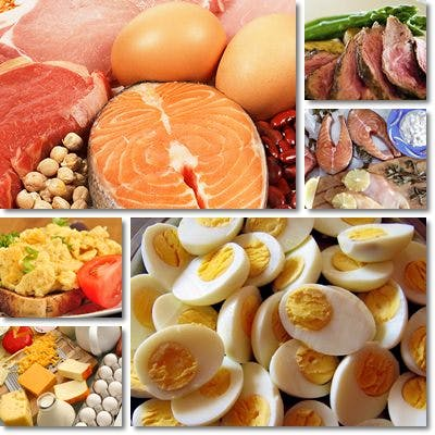 fonti-di-proteine