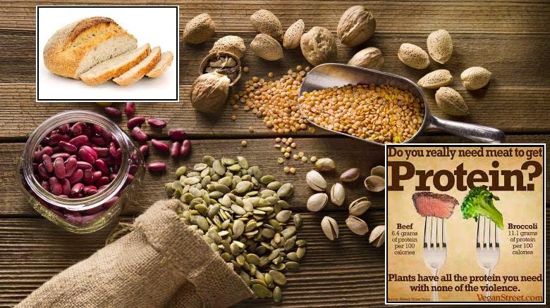 proteine dieta vegana